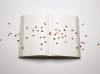 Manejo y Uso de los Libros con Efectividad