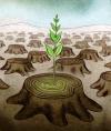 Energ�as Renovables: Ayudando al medioambiente